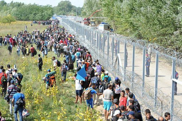 migrantwar